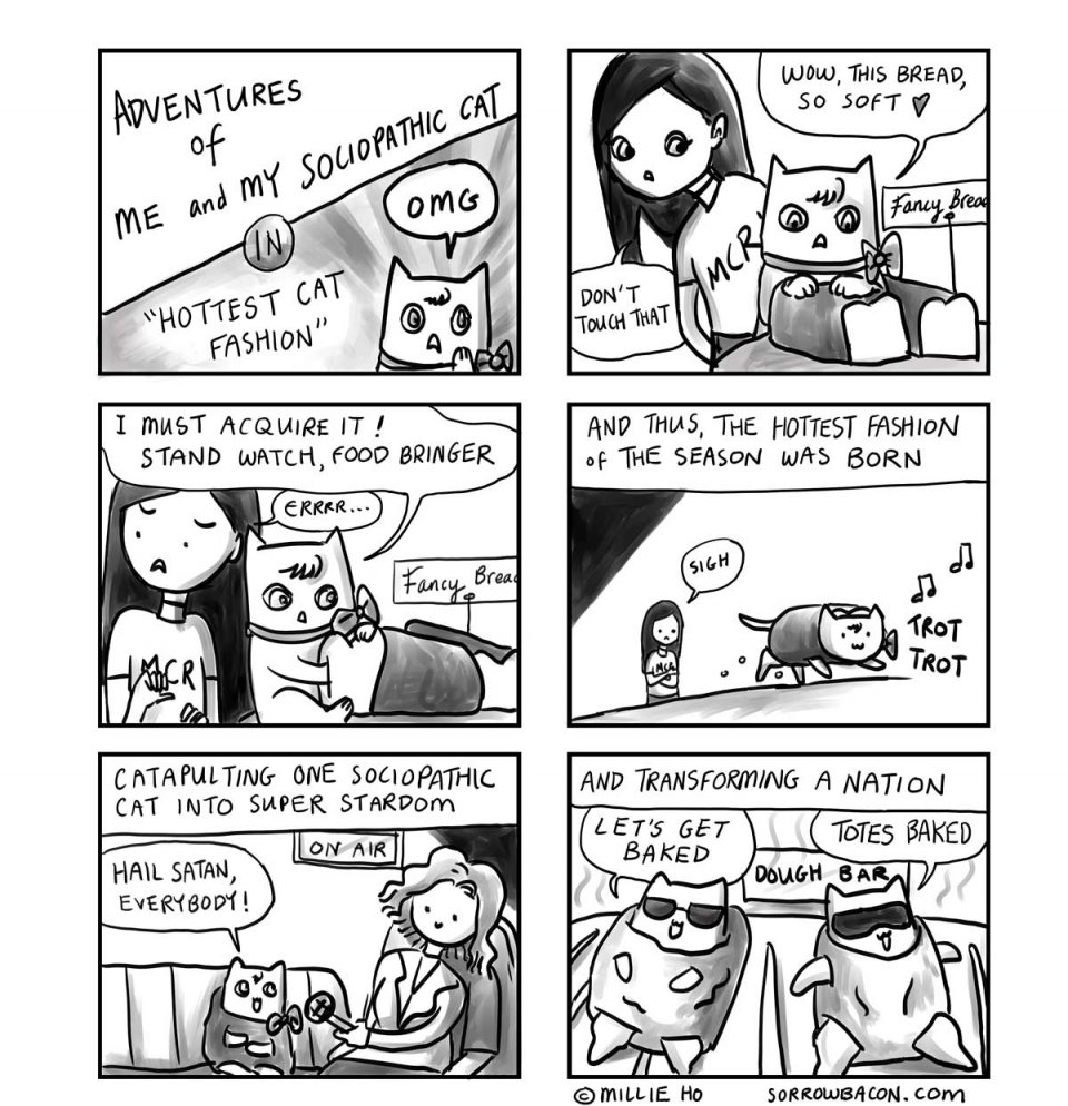 SORROWBACON Hottest Cat Fashion Comic by Millie Ho