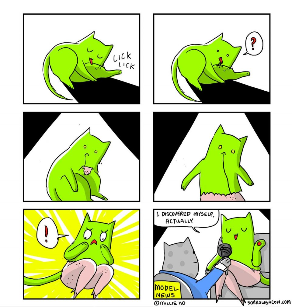 SORROWBACON The Fur Strand Cat Comic by Millie Ho