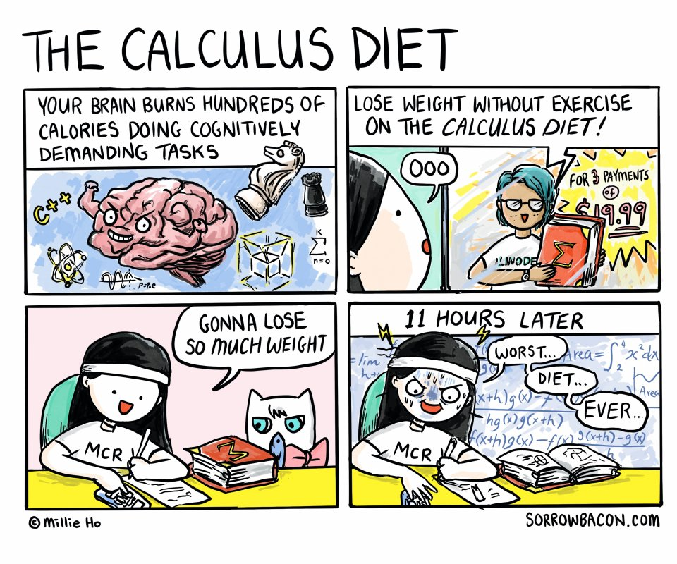 The Calculus Diet sorrowbacon comic