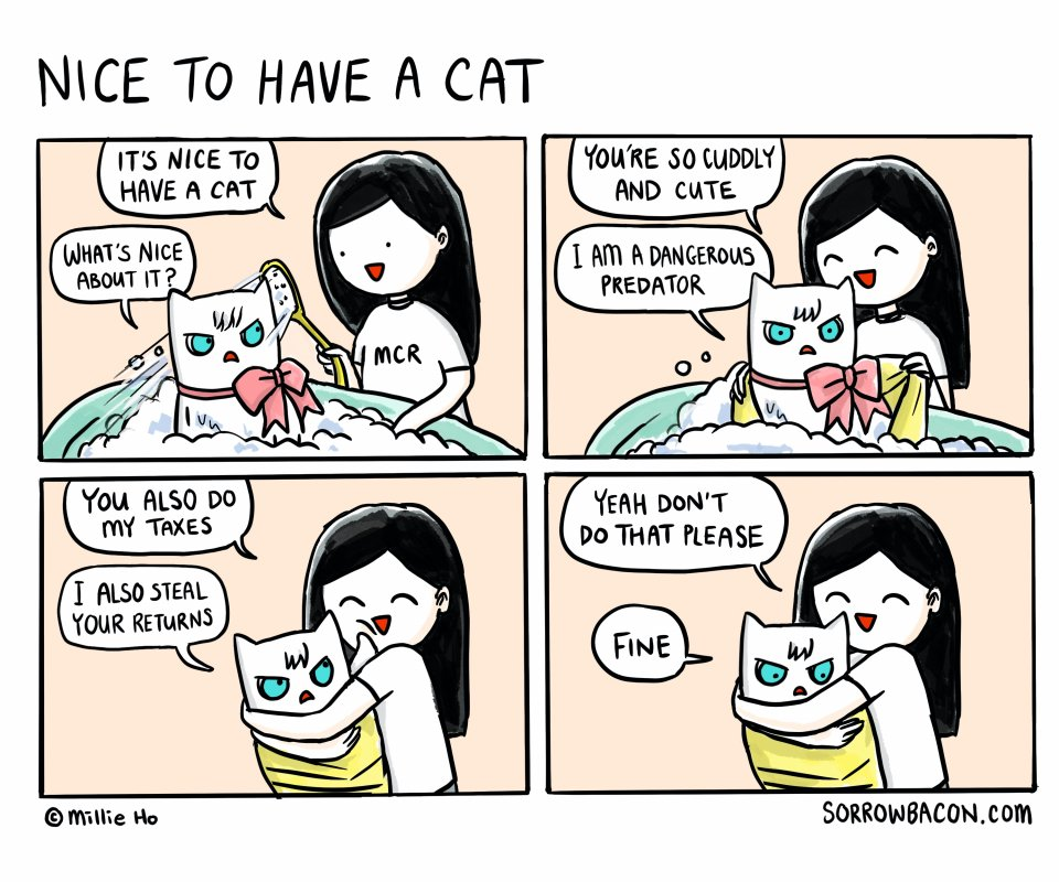 Nice to Have a Cat sorrowbacon comic